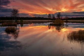 Laanemaa_järv_Orkjärve_looduskaitsealal